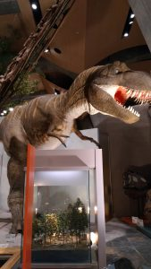 ティラノサウルスのジオラマ