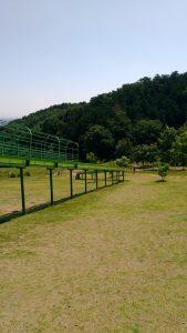 観音山ファミリーパークの写真
