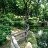 群馬の森に水遊び場や遊具はある?夏に子供(幼児)連れで行った体験談!