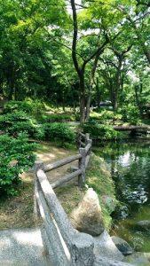 群馬の森遊具や水場1