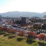 上田城けやき並木紅葉まつり時の駐車場の混雑状況や待ち時間は?どこにとめたか実体験