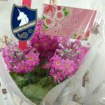 愛妻の日に買う花の値段の相場は?近所の花屋さん(群馬県高崎市)で売っていた花の価格帯は意外にお手頃でした