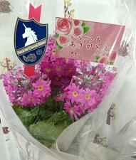 愛妻の日の花