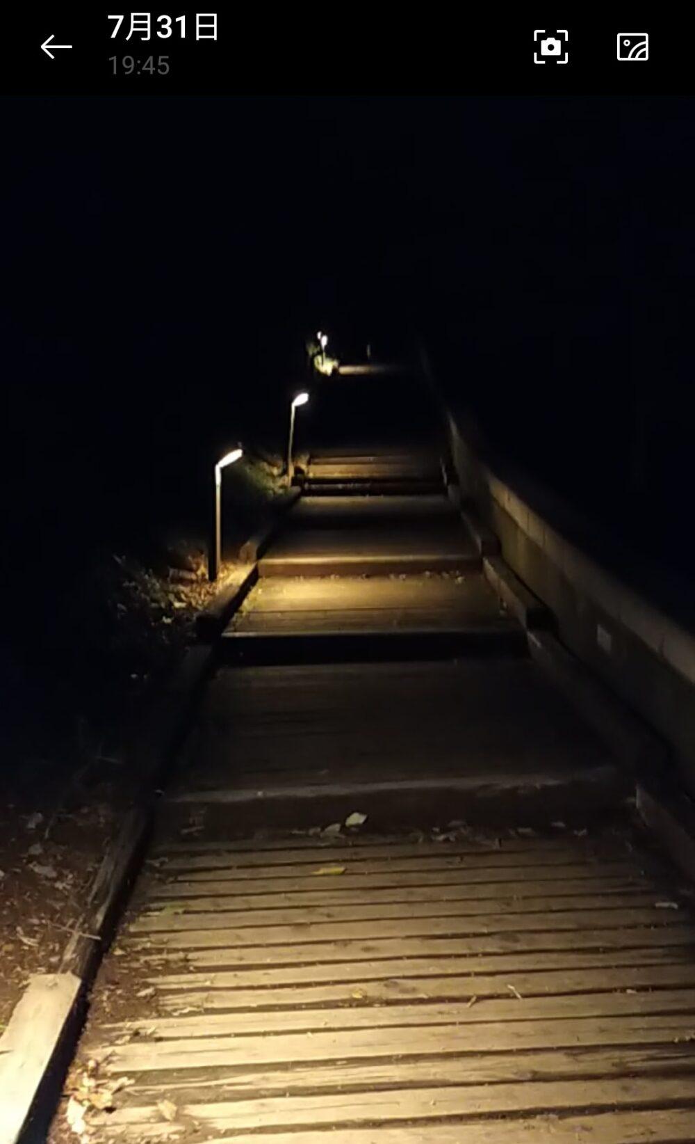 ぐんま天文台の夜道
